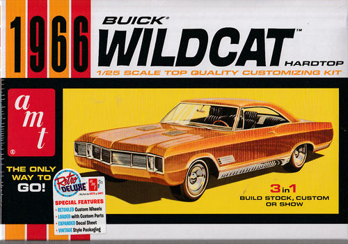 Buick Wildcat Hardtop 3in1 Stock,Custo Show Car.